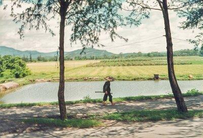 Commune Field