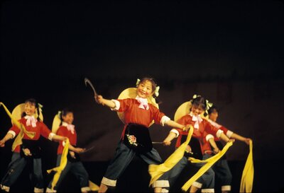 Wuxi Little Red Guards Performance